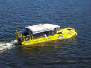 bostonducktours.jpg